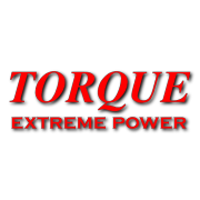 Torque Motors Decal