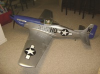 p51 fighter