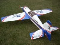 Blue and White Pilot Yak 54