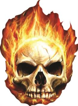 Skull Flame Decal Package